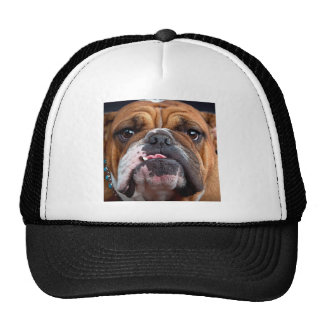 Bulldog English Bad Face Trucker Hat