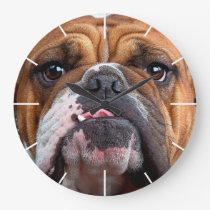 Bulldog English Bad Face Large Clock