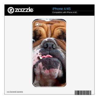 Bulldog English Bad Face iPhone 4 Decal