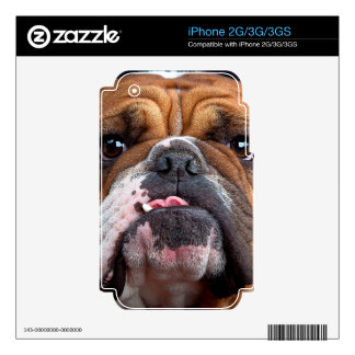 Bulldog English Bad Face Skin For The iPhone 3