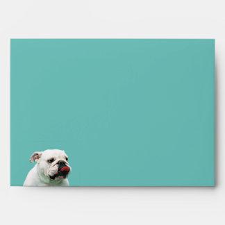 Bulldog Envelope