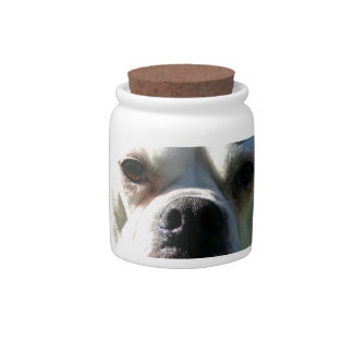 Bulldog Face Candy Jars