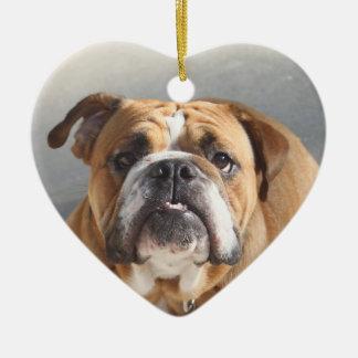 Bulldog Face - English Bulldog, Brown Ornaments