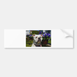 Bulldog Flowers Bumper Sticker