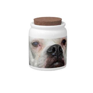 Bulldog Flowers Candy Jars