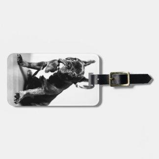 Bulldog francés etiqueta para maleta