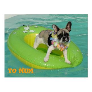 "Bulldog francés tarjeta postal ""To Mum """