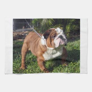 bulldog full.png hand towel