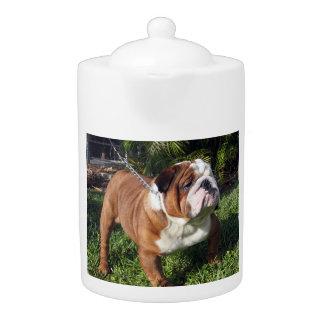 bulldog full.png teapot