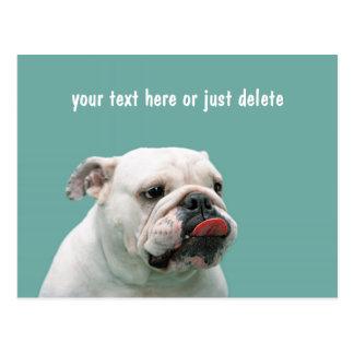 Bulldog funny face tongue custom postcard