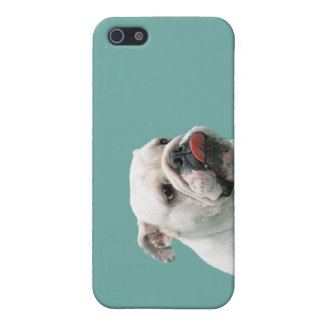 Bulldog funny face with tongue sticking out cover for iPhone SE/5/5s