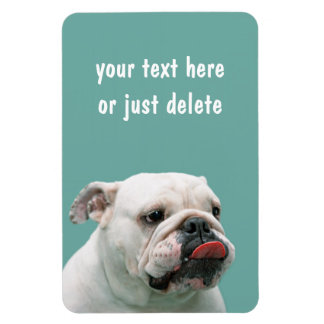 Bulldog funny face with tongue sticking out custom magnet