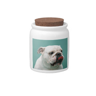 Bulldog funny face with tongue sticking out, gift candy jar