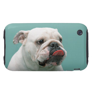 Bulldog funny face with tongue sticking out, gift iPhone 3 tough case
