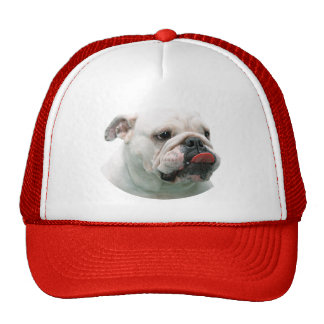 Bulldog funny face with tongue sticking out, gift trucker hat