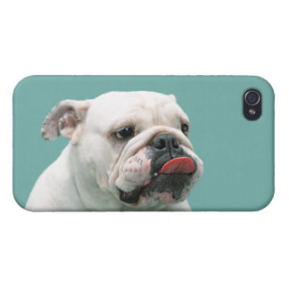 Bulldog funny face with tongue sticking out photo case for iPhone 4