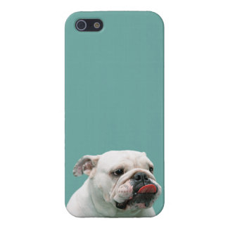 Bulldog funny face with tongue sticking out photo cover for iPhone SE/5/5s