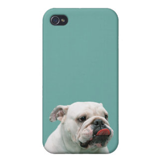 Bulldog funny face with tongue sticking out photo iPhone 4/4S cover
