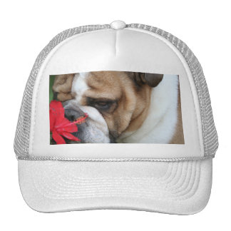 Bulldog Hat take time to smell the flowers