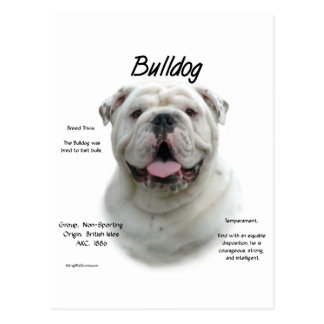 Bulldog History Design Postcard