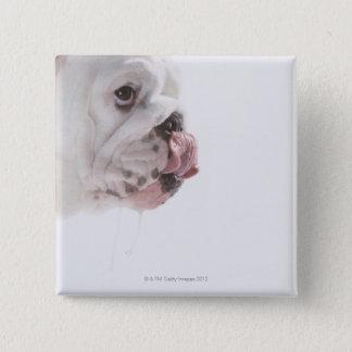 Bulldog Licking Button