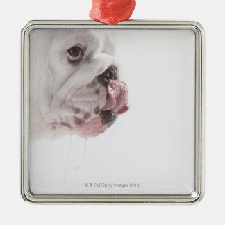 Bulldog Licking Metal Ornament