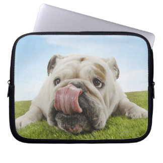 Bulldog Lying on Grass Licking Lips Computer Sleeve