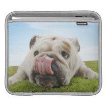 Bulldog Lying on Grass Licking Lips iPad Sleeve