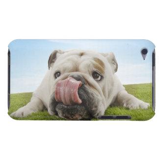 Bulldog Lying on Grass Licking Lips iPod Touch Case