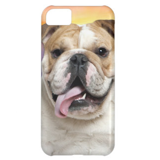 Bulldog Meadow Cover For iPhone 5C