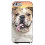 Bulldog Meadow Tough iPhone 6 Case