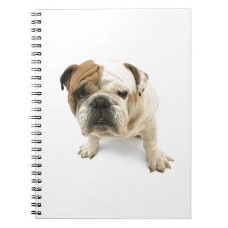 Bulldog Spiral Note Books