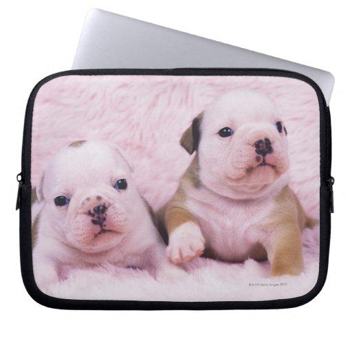 Bulldog; often called the English Bulldog. Is a Laptop Computer Sleeve