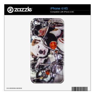 Bulldog on Motorcycle Skin For iPhone 4