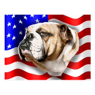 Bulldog Patriot US Flag Postcard