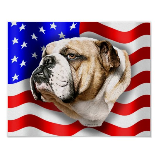 Bulldog Patriot US Flag Poster