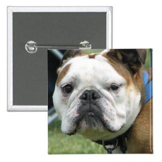 Bulldog Photo Square Pin