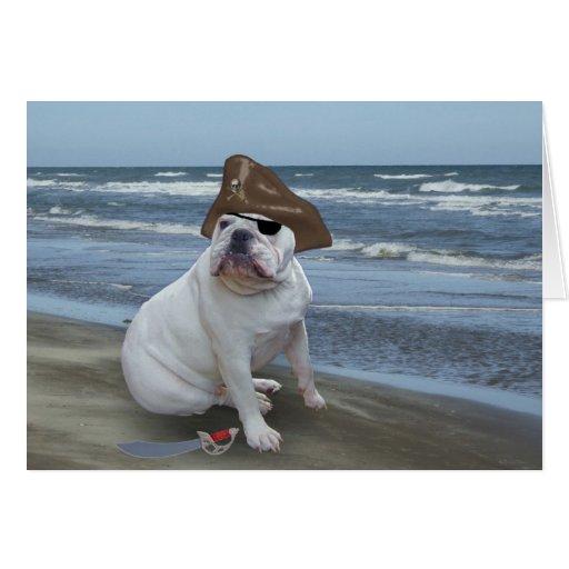 Bulldog pirate greeting card