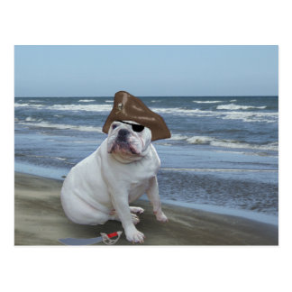 Bulldog Pirate on the beach Postcards