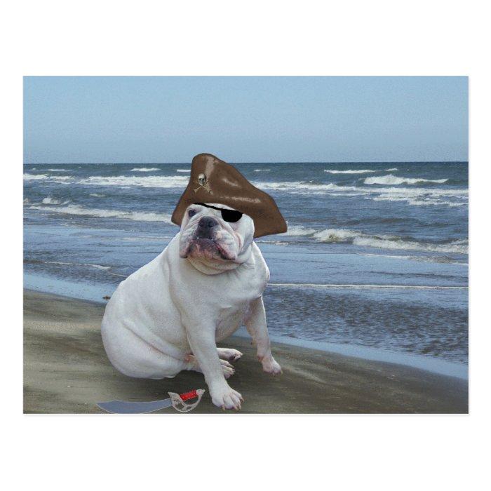 Bulldog Pirate on the beach Postcard