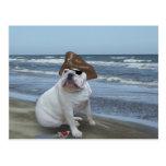 Bulldog Pirate on the beach Postcards