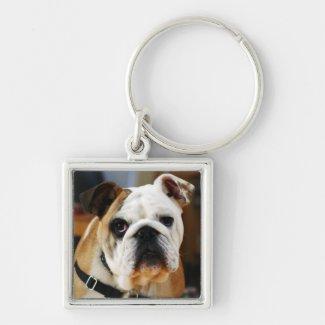 Bulldog Premium Keychain
