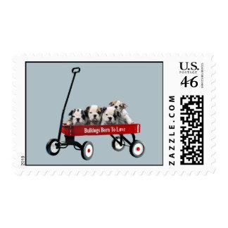 Bulldog Puppies In Wagon Postage