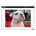 """Bulldog Puppy 15"""" Laptop Skins"""