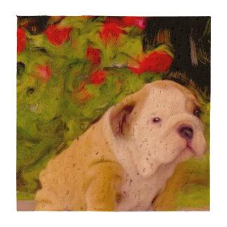 Bulldog puppy art drink coasters