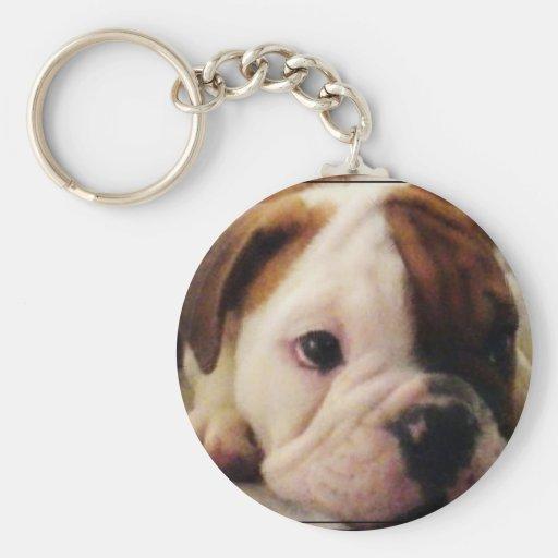 Bulldog puppy basic round button keychain