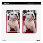Bulldog Puppy Skin For Kindle Fire