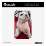 Bulldog Puppy Skins For iPod Touch 4G