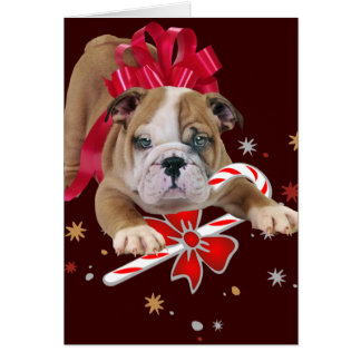Bulldog puppy with red bow and candy cane card