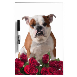 Bulldog Red Roses Bloom Birthday Anniversary Dry-Erase Board